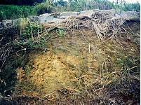 地質調査・解析